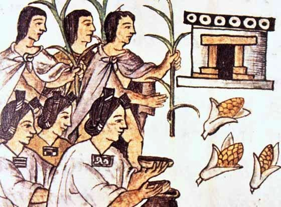 Ofrendas con maíz, Códice Florentino