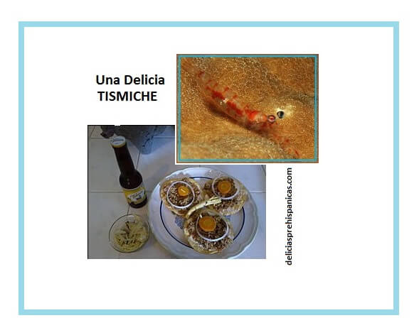 Tostadas de TISMICHE, alimento prehispánico rico en proteínas.