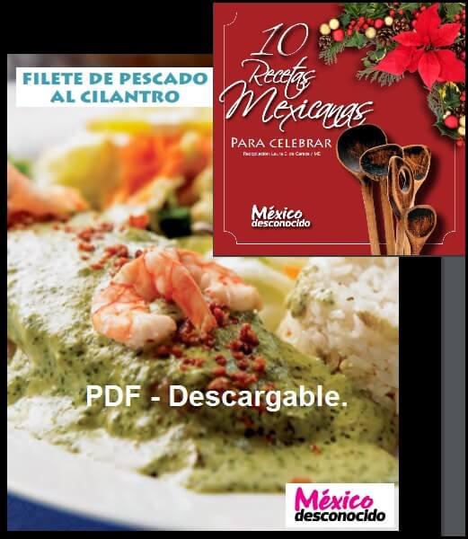 PDF -10 Platillos de México Desconocido.