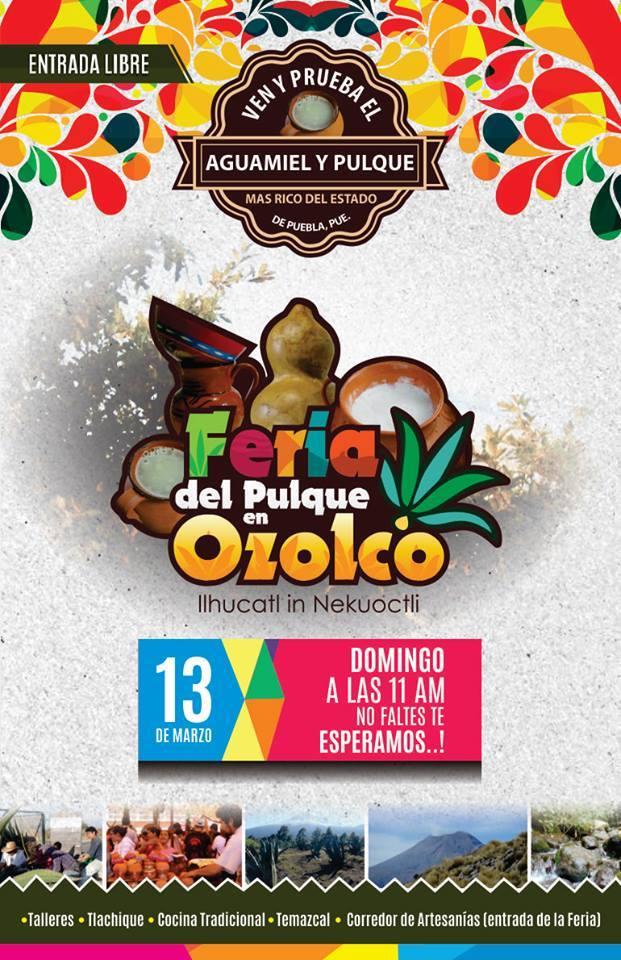 Feria del Pulque en San Mateo Ozolco, Puebla.