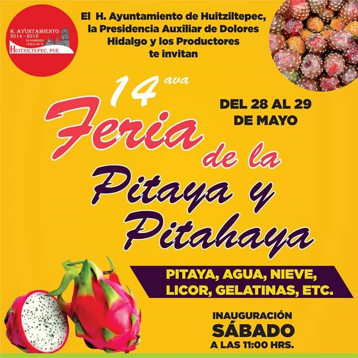 Feria de la Pitaya y la Pitahaya Huitziltepec 2016