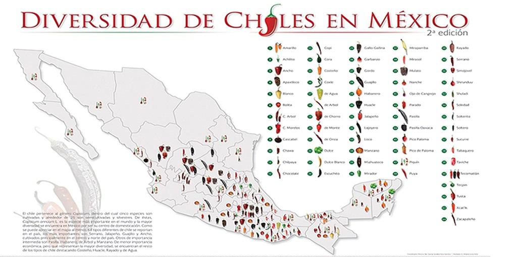 Conoce la diversidad de CHILES en México.