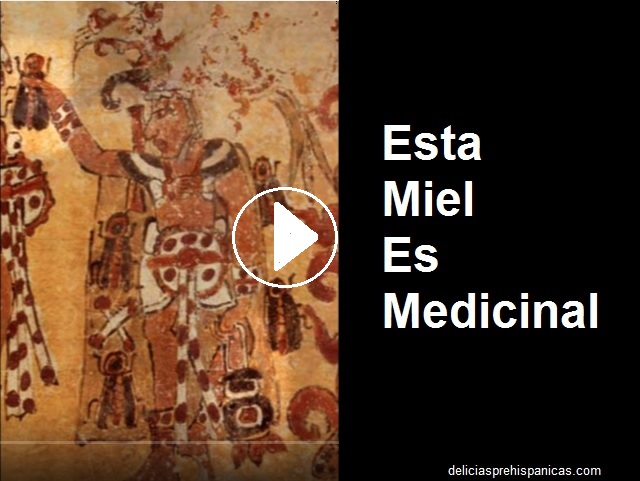 XUNAN KAB – Esta miel es medicinal (2 documentales)