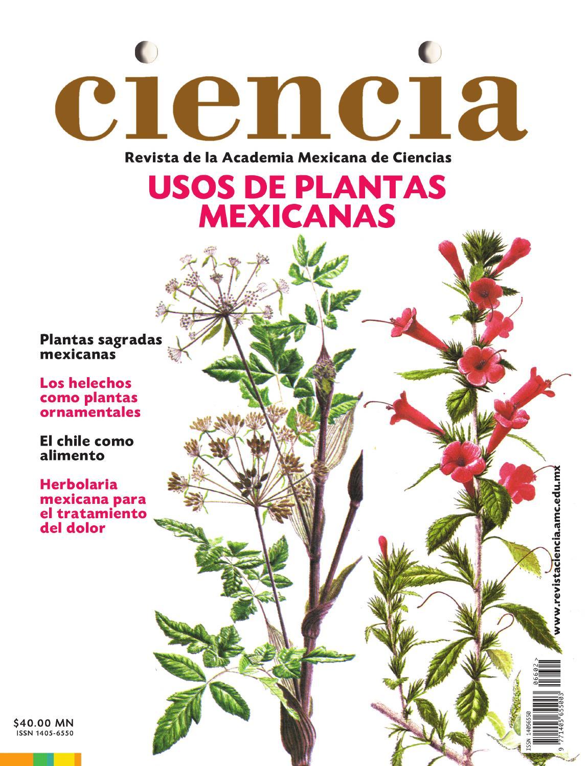Uso de Plantas Mexicanas. Descarga gratis la revista Ciencia.