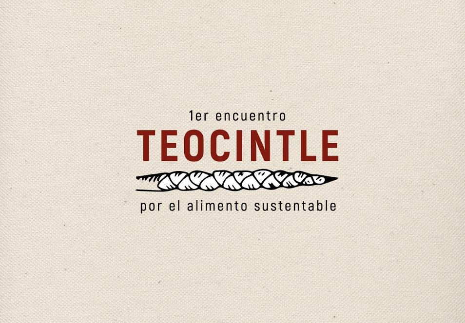 Teocintle: Primer encuentro por el alimento sustentable
