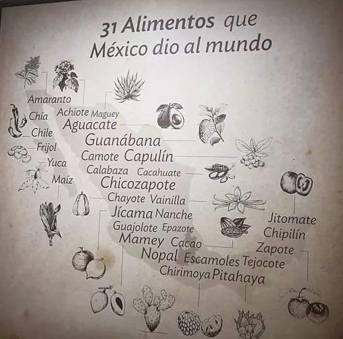 31 Alimentos que México dió al mundo. Artes de México.
