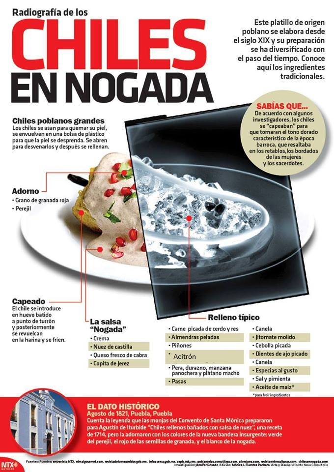 Radiografia de los Chiles en Nogada