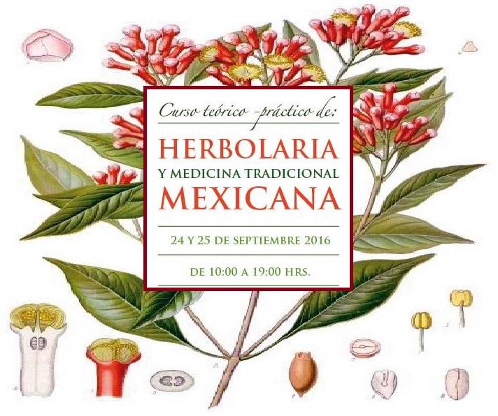 Curso Teórico Práctico de Herbolaria y Medicina Tradicional Mexicana, CDMX.