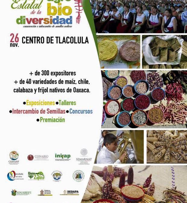 6ta Feria estatal de la agro biodiversidad, Tlacolula de Matamoros Oaxaca