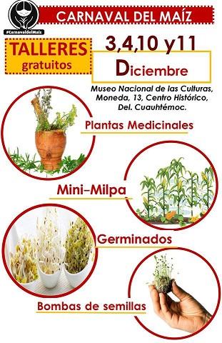 TALLERES GRATUITOS, la milpa, plantas medicinales, germinados, bombas semilla –  Carnaval del Maíz.