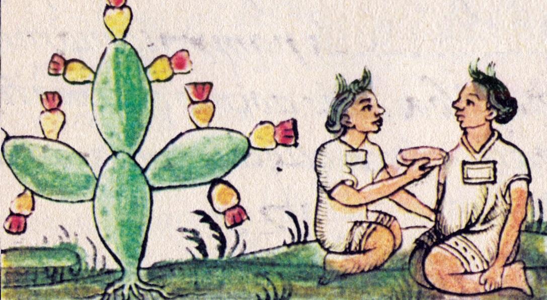 Medicina mesoamericana, prehispanica