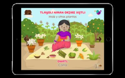 App's para aprender NÁHUATL, MIXTECO, PURÉPECHA y MAYA desde tu teléfono.