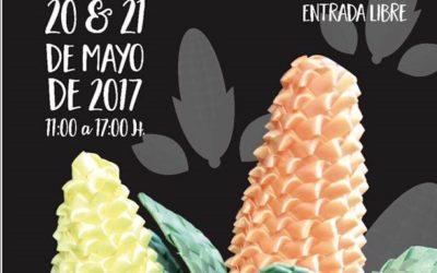 Primera feria del maíz @museodelosferrocarrileros