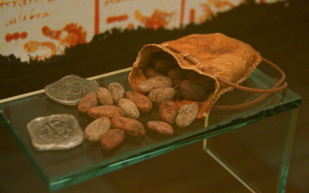 Sobre los usos medicinales y económicos del CACAO.