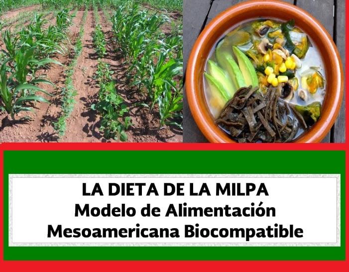 Libro digital «La dieta de la MILPA». Descarga en PDF