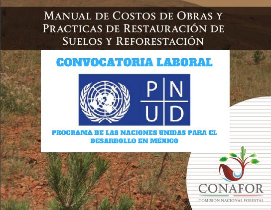 """Oferta laboral a distancia: """"Servicios de Consultoría en restauración de ecosistemas forestales"""" UNDP, México."""