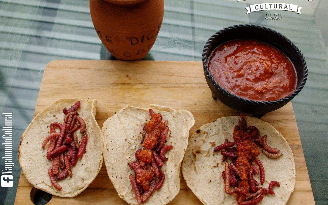 Ven a probar los tacos de Chinicuil y un rico Pulque. Todos invitados.