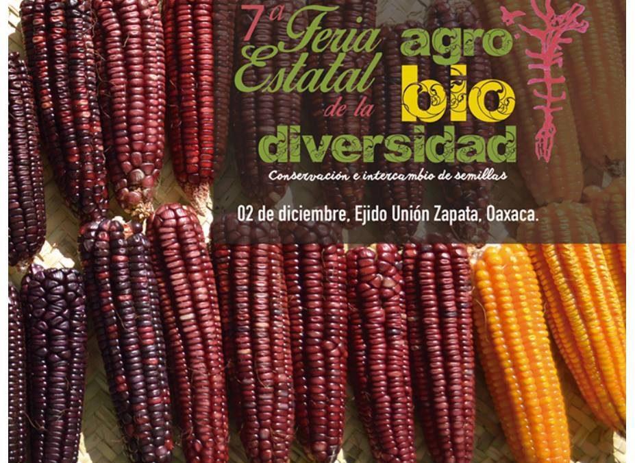 7a Feria de la Agrobiodiversidad. Sábado 2 de Diciembre, 2017