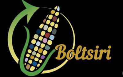 Estudiantes mexicanos crean bolsa 100% biodegradable elaborada a partir de residuos del maíz