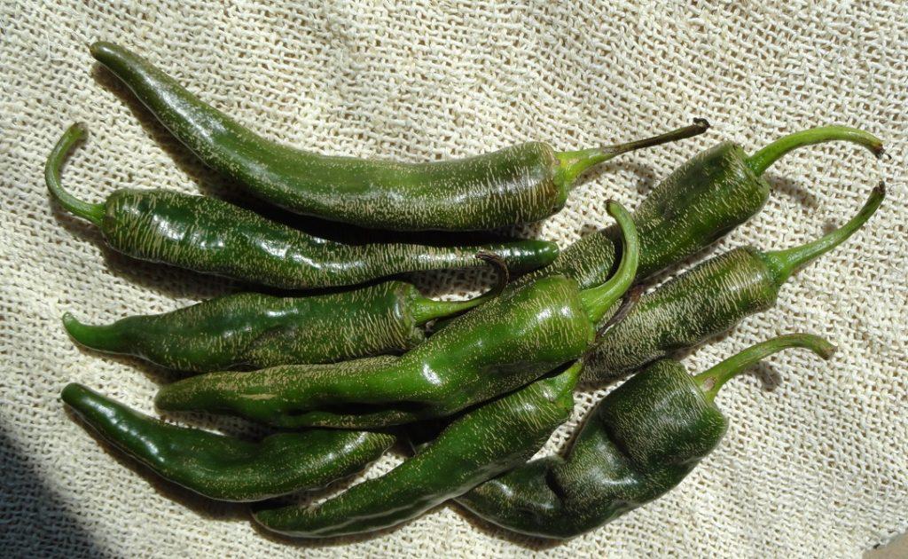 Chile loco largo. Foto: Cocina Cinco Fuegos