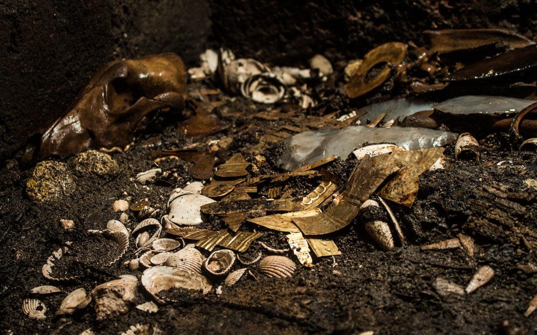 VIDEO: descubrimiento histórico en la CDMX: ofrendas de oro, copal, huesos de lobo, pez sierra y conchas del mar caribe, etc.