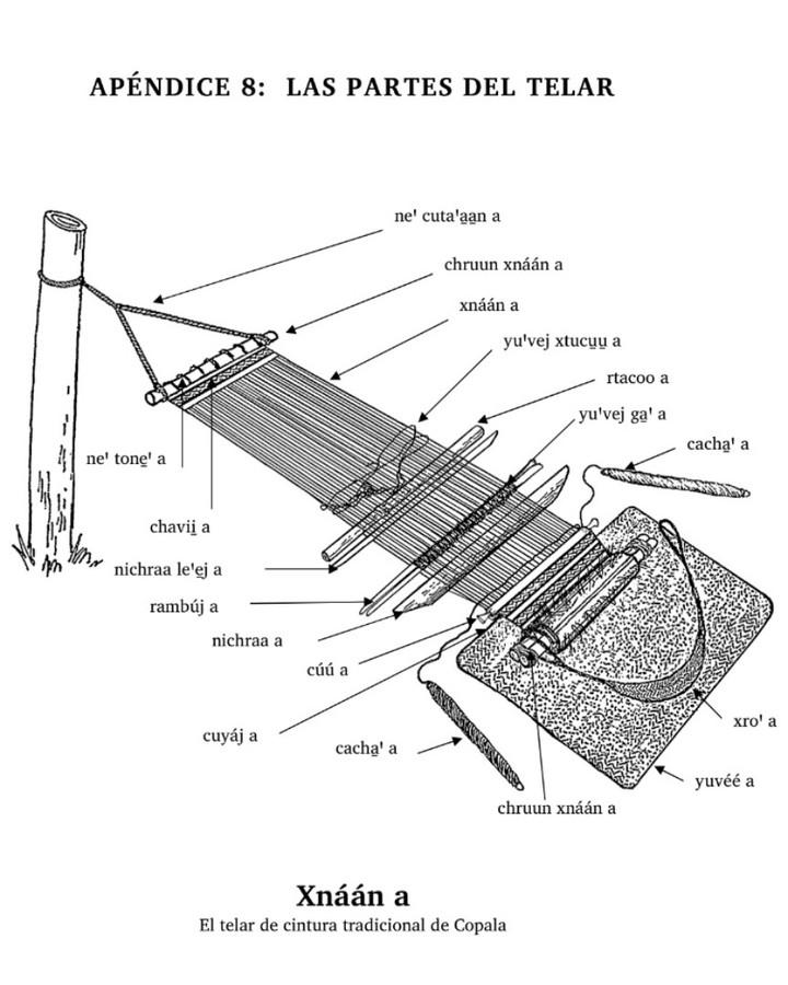 ¿Conoces cuáles son las partes de un telar de cintura triqui?