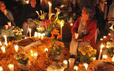 36 usos medicinales del Cempasúchil / Cempoalxóchitl flor de los 400 pétalos.