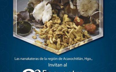Cocinando con HONGOS. 2do. Encuentro Gastronómico, domingo 28 de Octubre.
