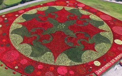 #OrgulloNacional México rompe récord del Tapete Floral más grande del mundo.