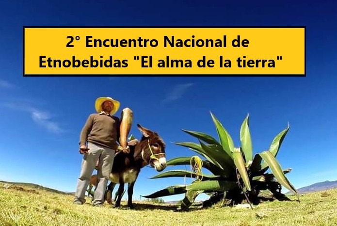 II Encuentro Nacional de Etnobebidas «El alma de la tierra».