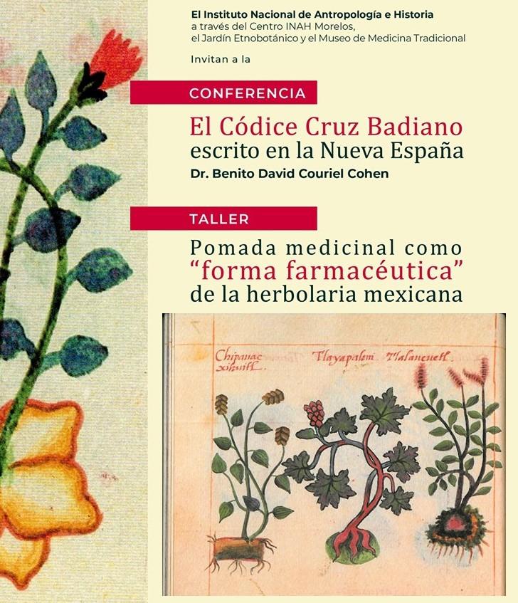 Taller: Pomada medicinal «forma farmacéutica» de la herbolaria mexicana.
