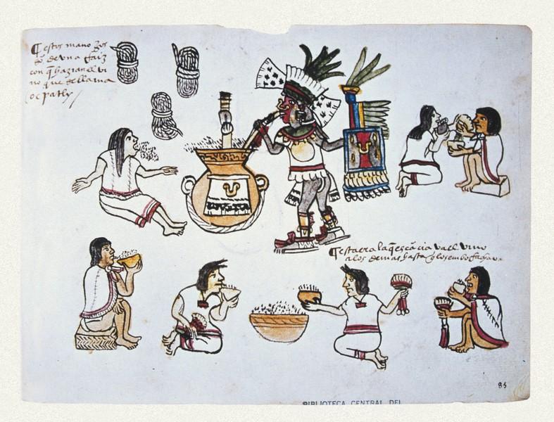 Historia del Códice Magliabechiano