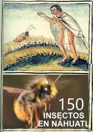 150 INSECTOS en lengua Nahuatl