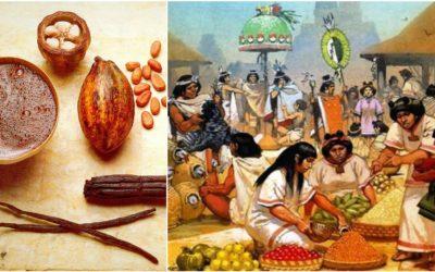 Variedades de cacao; uno para el CHOCOLATE, otro como moneda…
