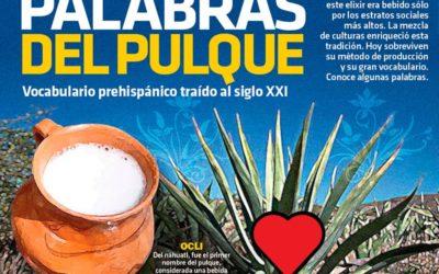 """Palabras del Pulque; """"bebida de los dioses""""…"""