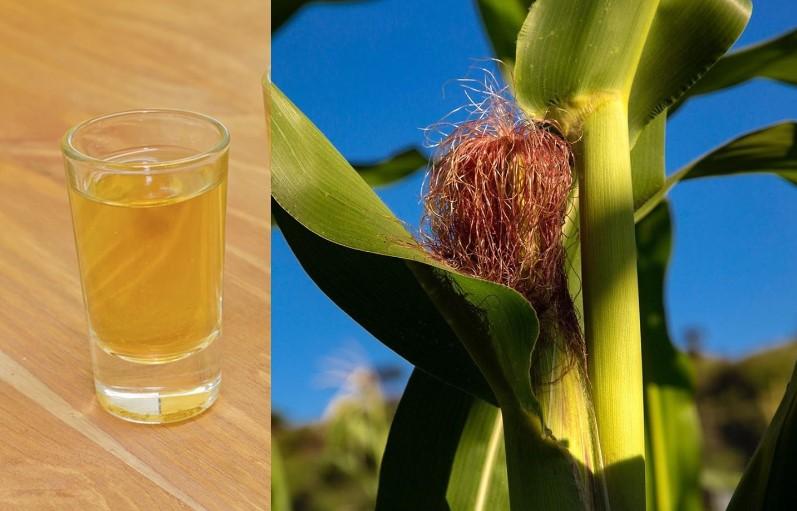 Prepara un rico licor de MAÍZ, con esta simple receta casera.