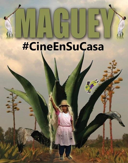 #CineEnSuCasa; «MAGUEY» ritualidad y cosmovisión