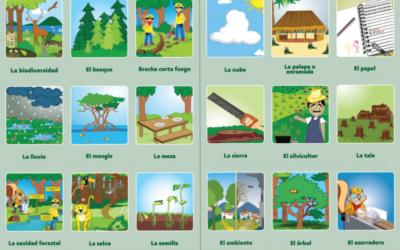 «Lotería Forestal» es un juego de mesa mexicano para niños de todas las edades