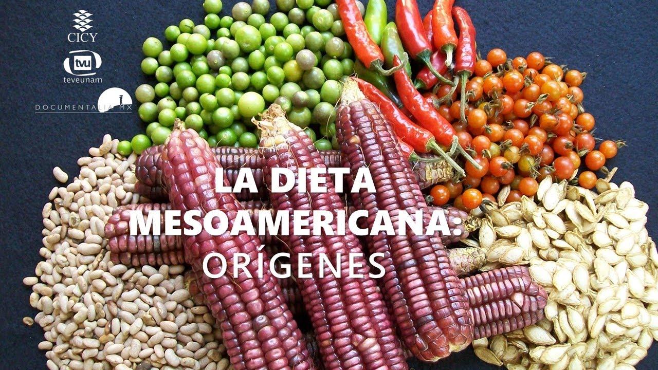 Documental » Orígenes de la dieta MESOAMERICANA»