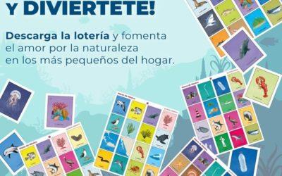 Descarga la nueva «Lotería Marina» y fomenta el amor por la naturaleza