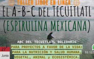 «El ABC de la ESPIRULINA»: Taller online gratuito para cultivar espirulina en casa.