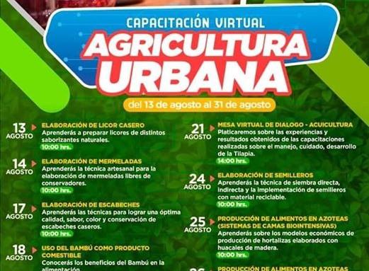 Taller virtual de Agricultura Urbana, totalmente gratuito.