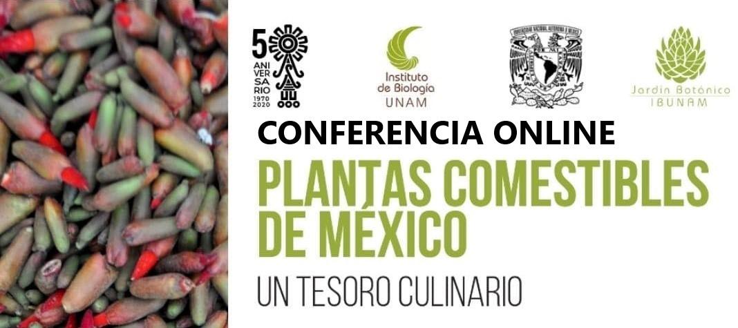 Plantas Comestibles de México un Tesoro Culinario – Conferencia Online por ZOOM