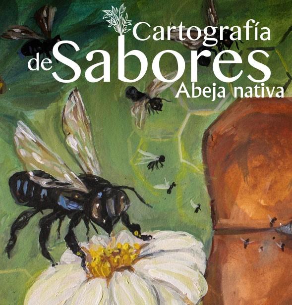 «Cartografía de Sabores» dedicada a la abeja nativa: «Pisilnekmej» en náhuatl. #DíaMundialDeLasAbejas @dgcpopulares